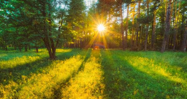 summer-solstice-2016-600x319